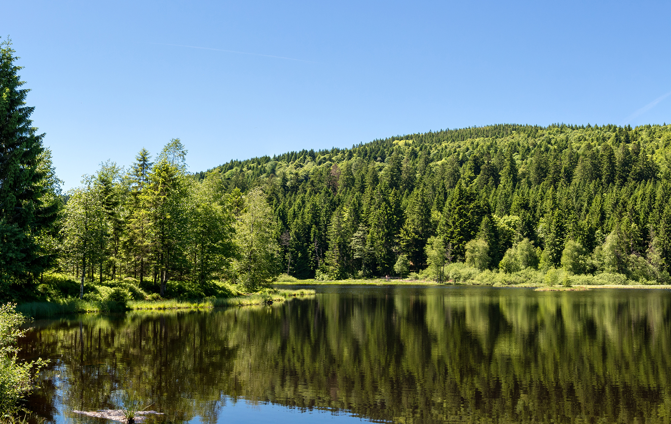 French countryside - Vosges. Panoramic view of a small natural l
